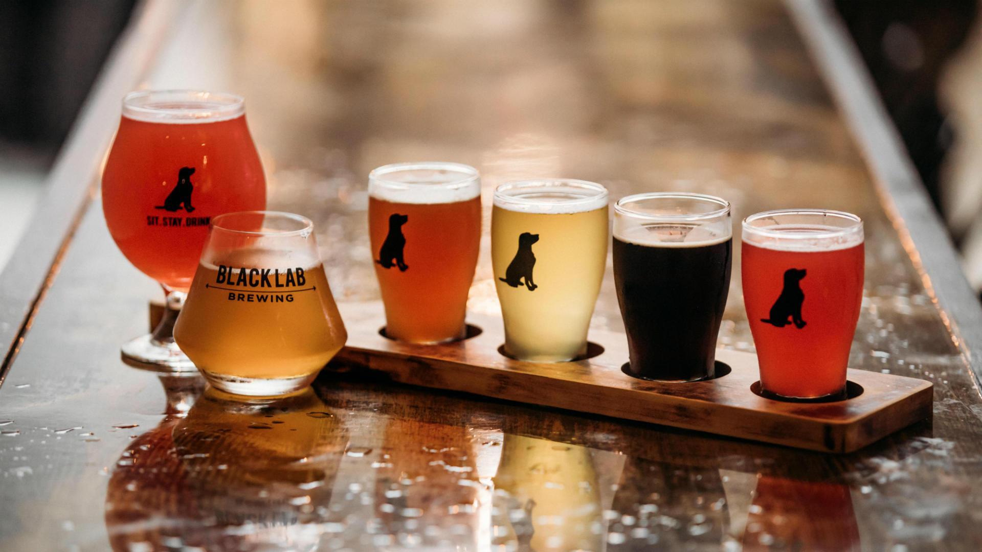 Black-Lab-Brewing-Beer-Tour