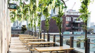 Toronto restaurants reopening