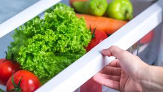 Community Fridges Toronto   produce inside a refrigerator drawer