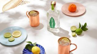 Cinco de Mayo   Hornitos Tequila Mexican Mule
