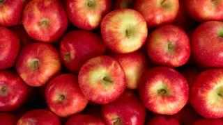 Love Food Hate Waste   Apples can be made into chutney or crumble to avoid waste