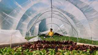 The future of farming is BIPOC | Aminah Haghighi