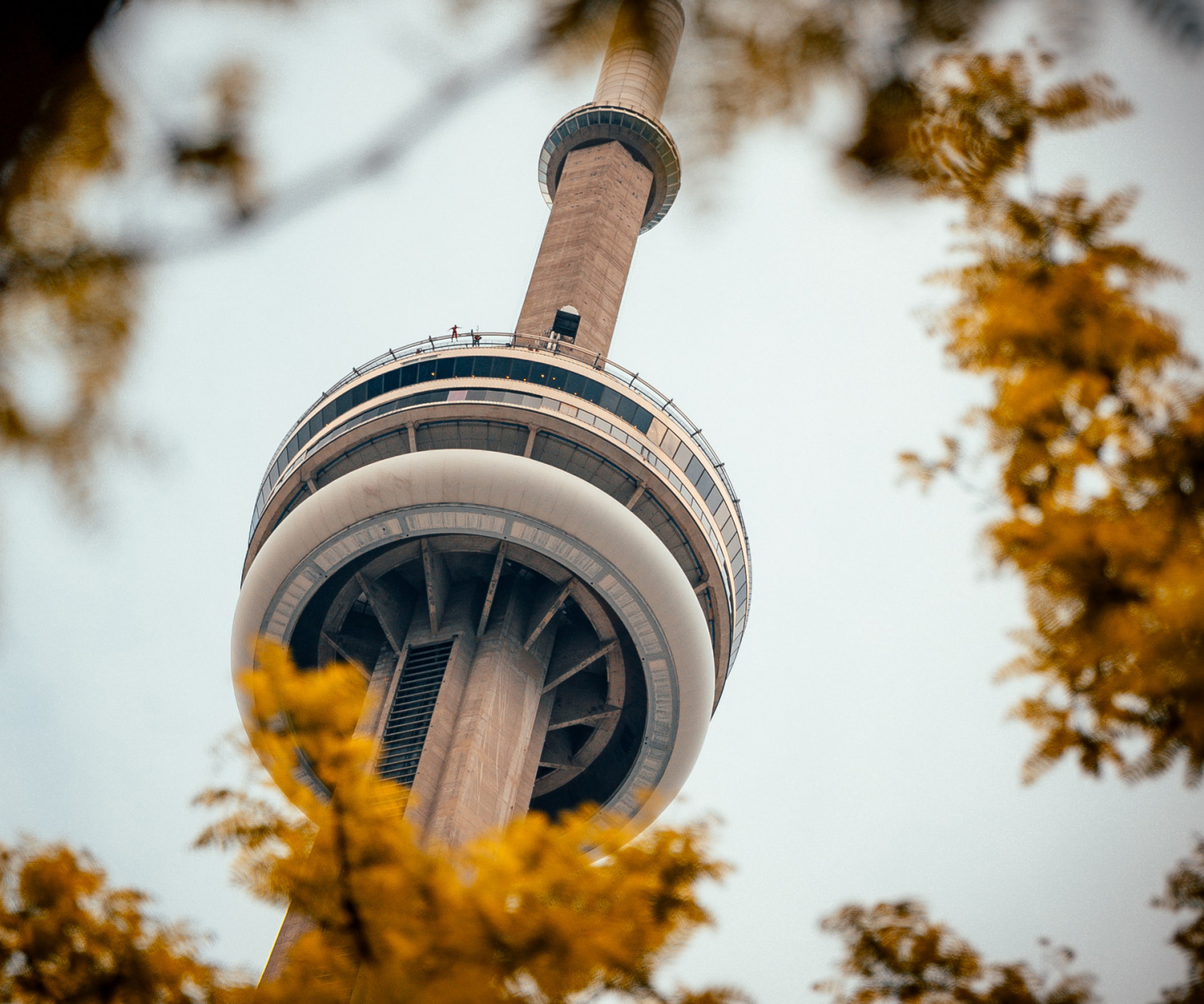 Toronto this October | The CN Tower surrounded by autumn leaves