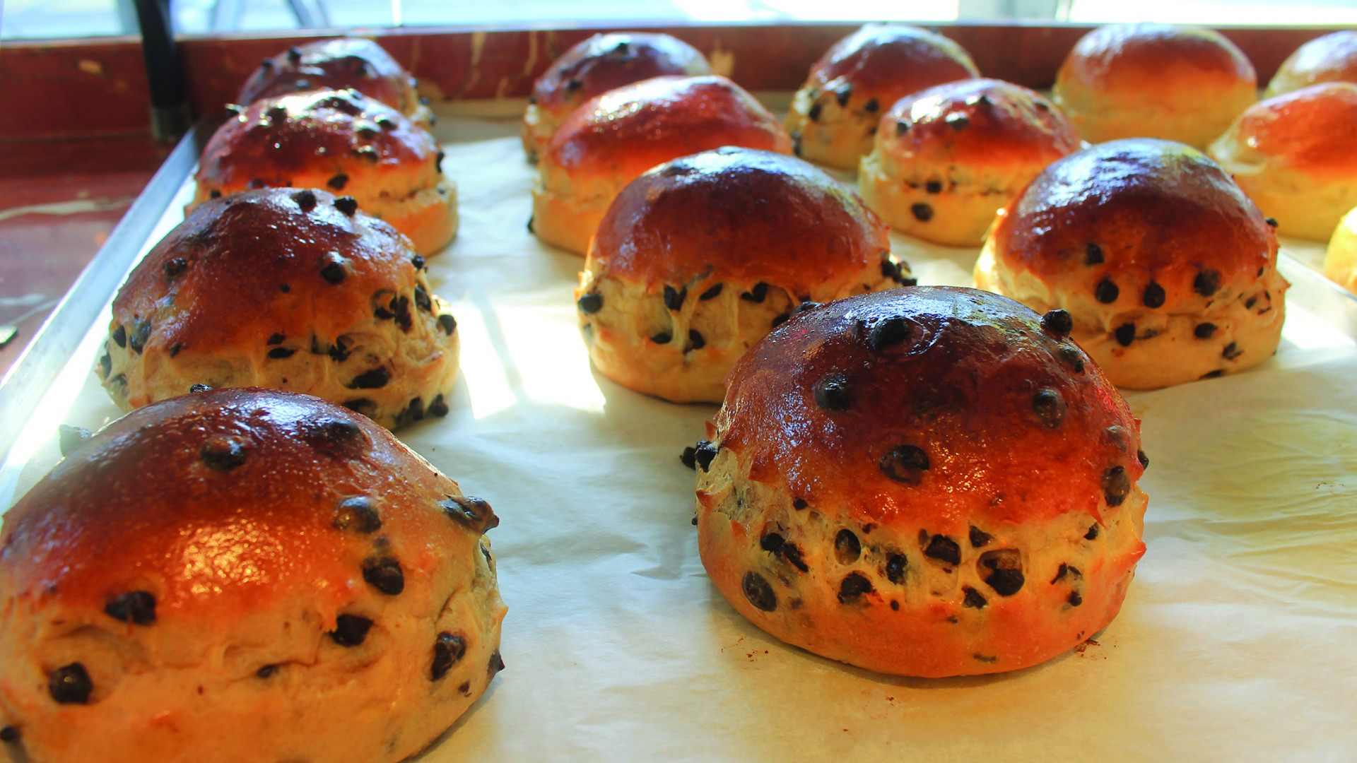 Toronto's French Bakery Marvelous by Fred | Fresh baked chocolate chip brioche