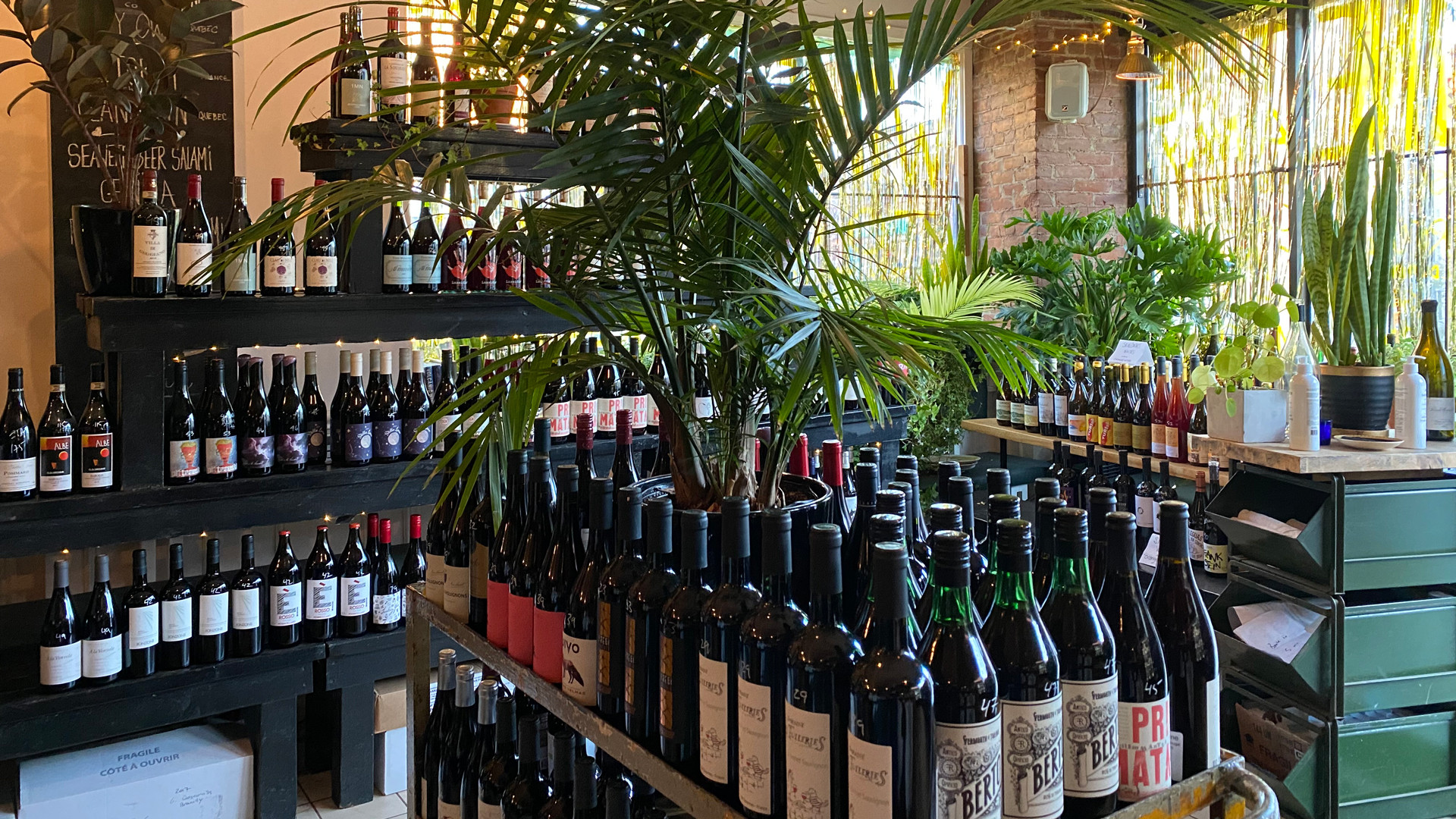 The best bottle shops in Toronto | A wide selection of wine bottles at Midfield wine bar