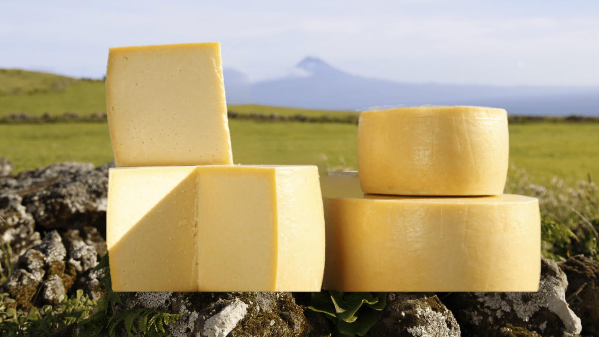 Azorean cheese from Portugal's Azores islands | An assortment of Azorean cheese