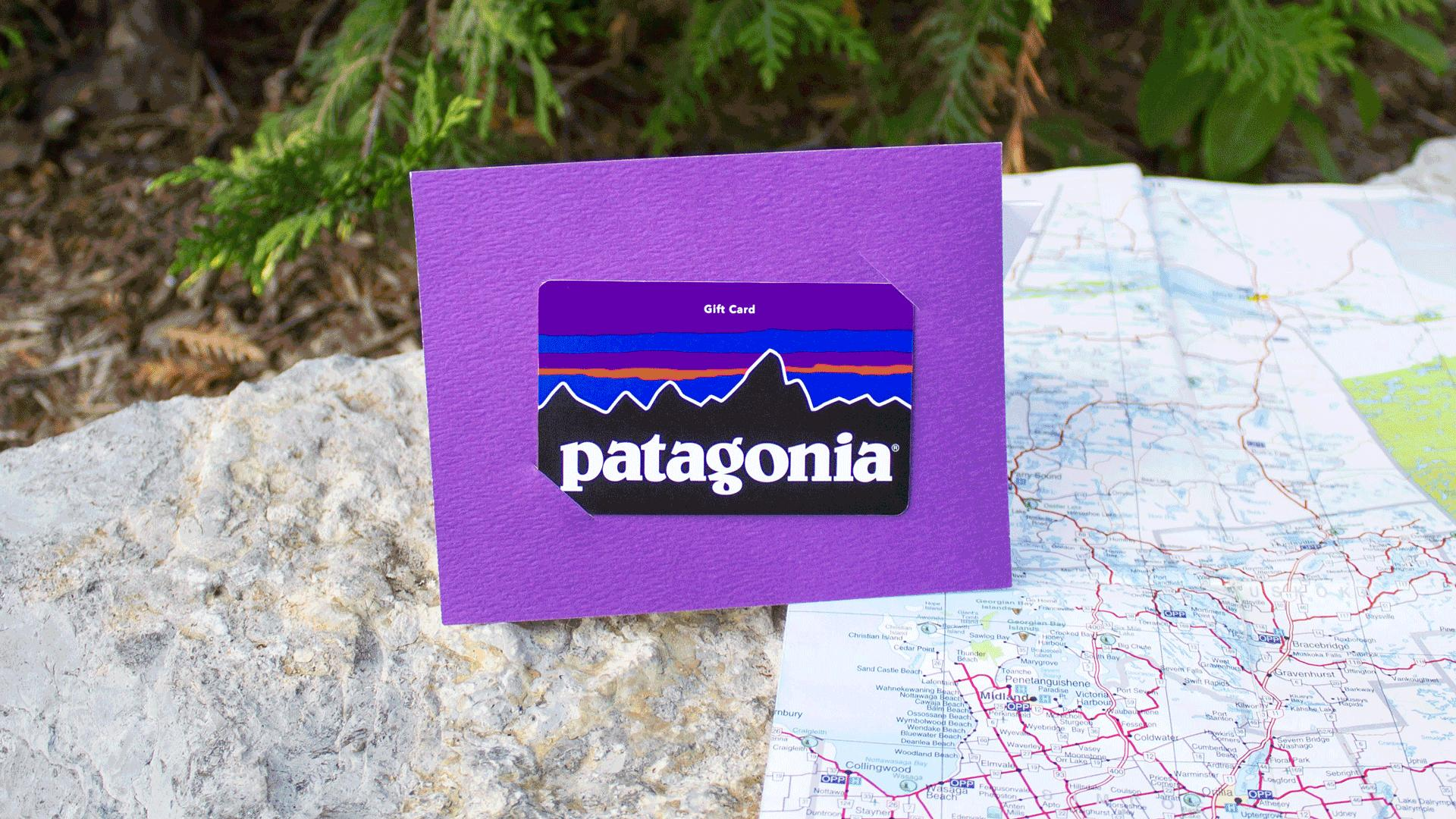 Win a super tea and healthy lifestyle prize pack | Patagonia gift card