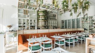 LOV vegan restaurant