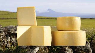 EU Grazing | The Azores makes a number of semi-soft and hard cheese