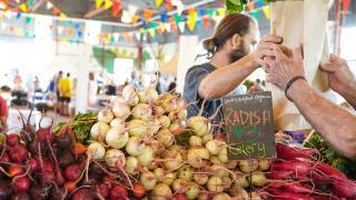 The freshest farmers' markets in Toronto | Fresh radishes at the Brickworks Farmers' Market
