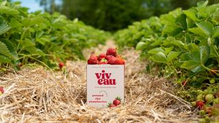 Win a three-month supply of Viveau and a stay at The June Motel in P.E.C. | Viveau is made with real fruit