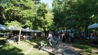 Things to do in Toronto this August 2021 | Trinity Bellwoods Farmers' Market