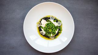 Restaurant review: Vela Toronto   Seasonal burrata appetizer