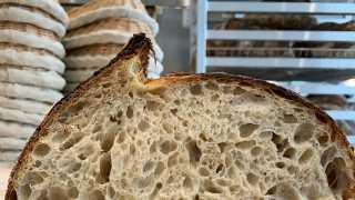 Emmer and Ash bakery on Harbord Street   Sourdough slice