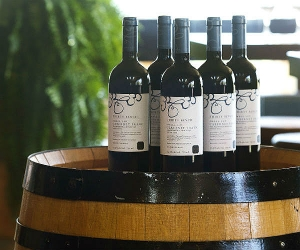 bottles-thirty-bench-cab-franc