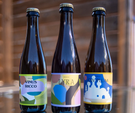 Burdock Brewery: three different beers