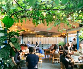 Paradise Grapevine, wine bar and bottle shop | The secret garden patio at Paradise Grapevine