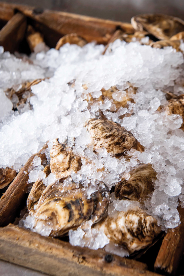 Restaurant supply chains: oysters from Oyster Boy