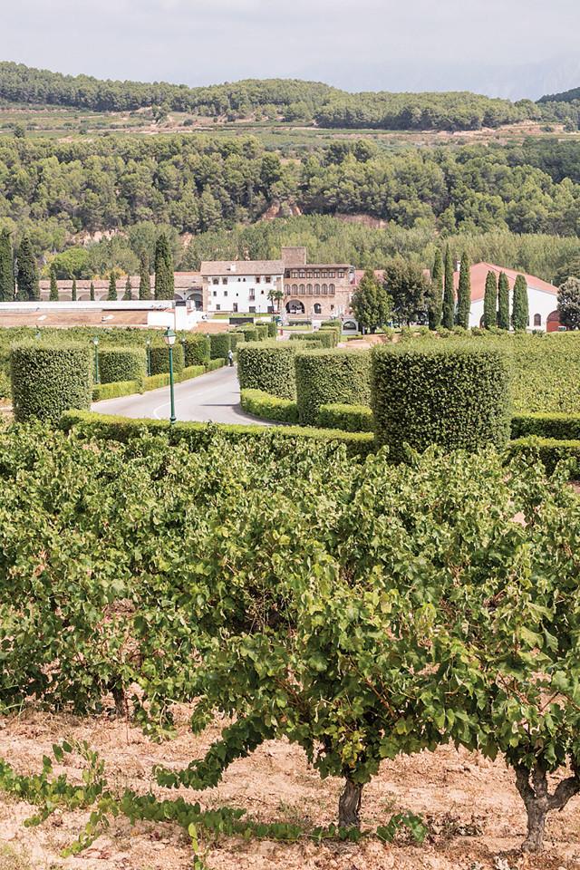 The Segura Viudas Estate in Spain
