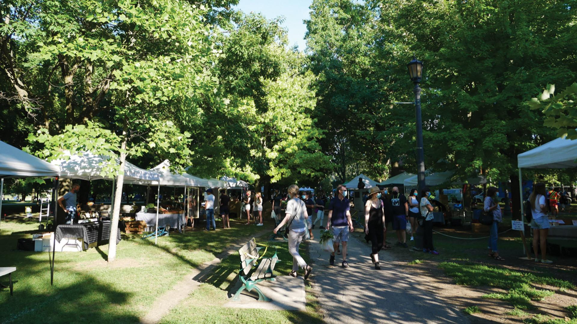 The freshest farmers' markets in Toronto | The Trinity Bellwoods Farmers' Market