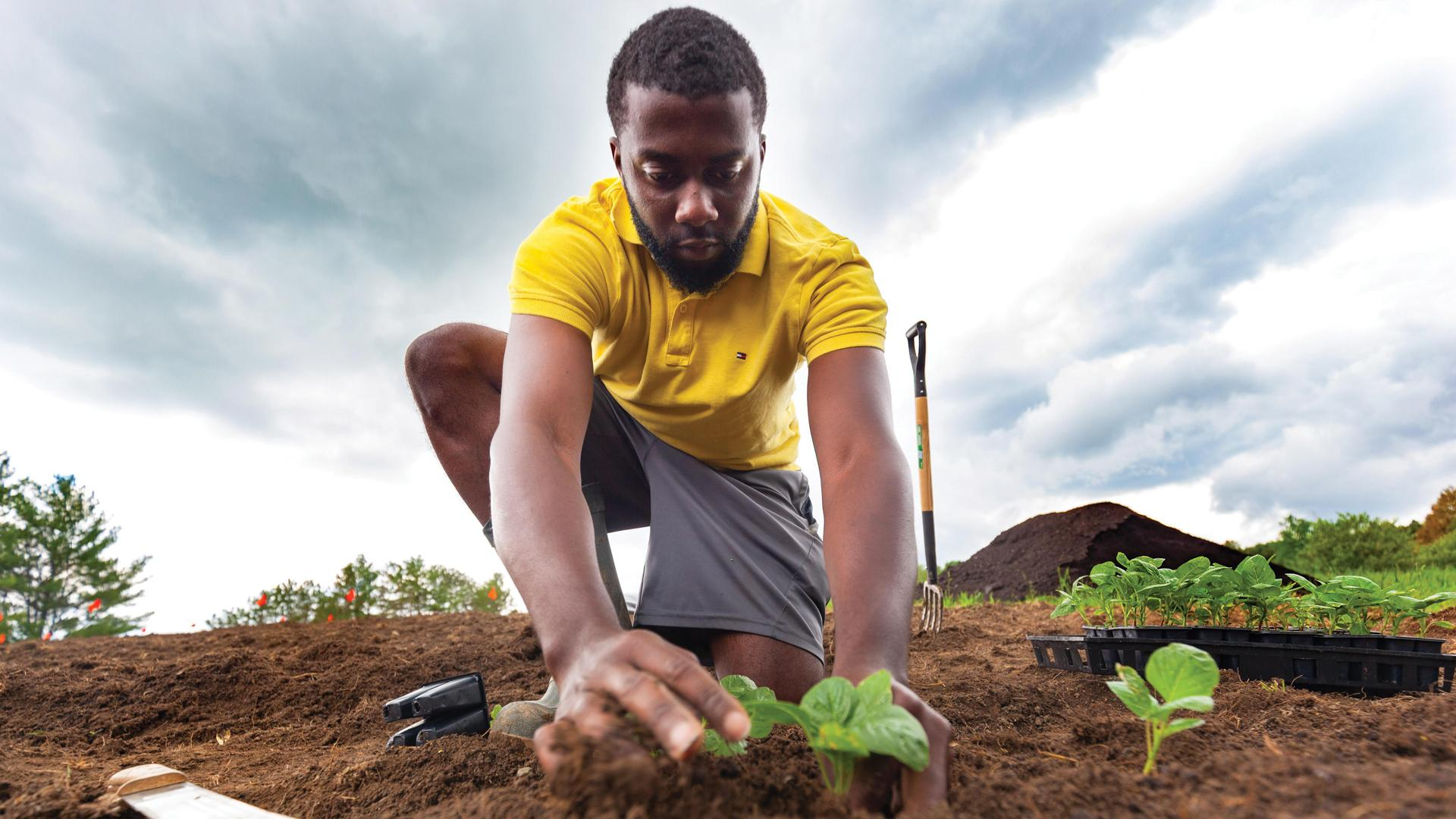 The future of farming is BIPOC | Soniel Gordon set up Sunny Boy Farms in Pickering