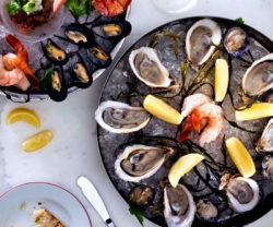Cafe Boulud oysters