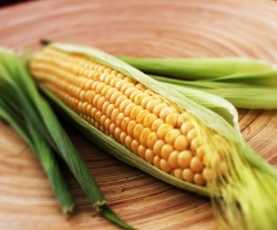 Make This: John Horne's Corn on a Campfire