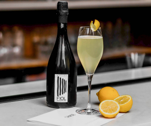FIOL Prosecco cocktail recipes