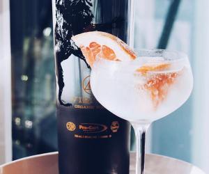 Viritus Organic vodka