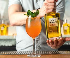 Ungava cocktail recipes