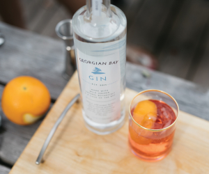 Win a Smashing Party Pack from Georgian Bay Spirit Co. | Georgian Bay Gin and a cocktail
