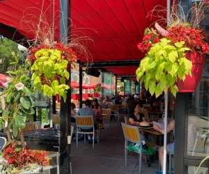 Estrella Damm Culinary Journey   The patio outside Cafe Diplomatico